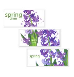 hyacinth banner vector image