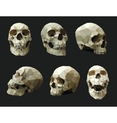 Set of Human Skulls vector image vector image