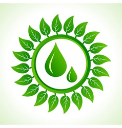 Water drops inside the leaf background vector image vector image