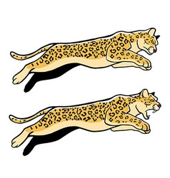 Jumping Leopard vector image vector image