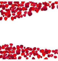 Background naturalistic rose petals vector