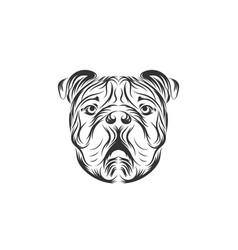 bulldog black icon logo vector image