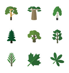 Flat icon natural set of jungle park baobab and vector
