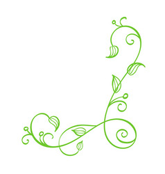 green hand drawn calligraphic corner vector image