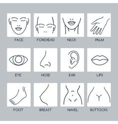 Parts human body icons vector