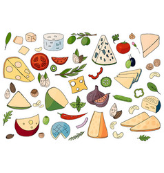 set of hand-drawn different cheese elements vector image