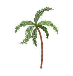 color silhouette with palm tree vector image vector image