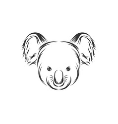cute koala face icon vector image