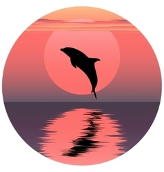 dolphin Jumping dolphin vector image