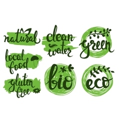 Eco friendly natural bio logo set Green vector