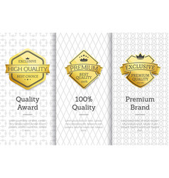 exclusive high quality awards premium brand set vector image
