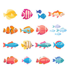colorful aquarium fish set isolated vector image vector image