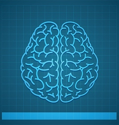 Human Brain Concept on Blue Background vector image