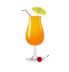 Screwdriver cocktail vector image vector image