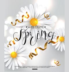 spring background chamomile flower vector image vector image