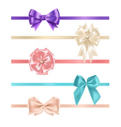 Bundle of gorgeous realistic satin bows and vector