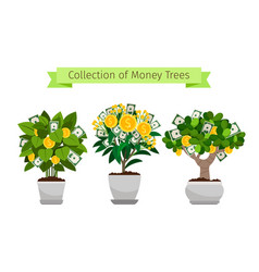 Money tree in flower pot set vector