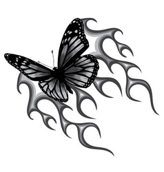Monochromatic a butterfly vector