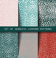Set of leopard seamless patterns vector