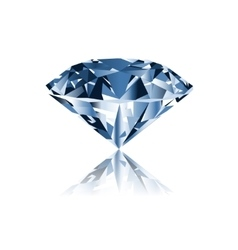Diamond isolated on white vector image