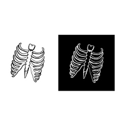 X-ray and skeleton of human rib cage vector image vector image