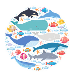 marine mammals and fishes set in circle narwhal vector image