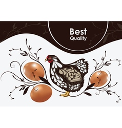 Chicken and eggs vector