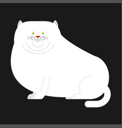 Fat white cat isolated big thick pet home vector