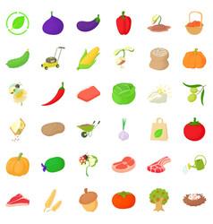 garlic icons set isometric style vector image