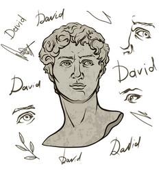 head david michelangelo vector image