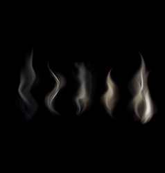set of transparent smoke on a vector image vector image