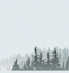 winter snowy landscape with age-old fir trees vector image