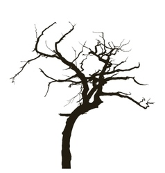Curved tree vector image vector image