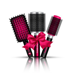 hair brush composition vector image