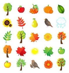 Autumn Symbols And Elements vector image vector image