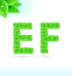 Sans serif font with green leaf decoration vector image vector image