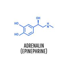 Adrenaline adrenalin epinephrine molecule vector
