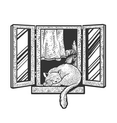 Cat sleeps on window sketch vector
