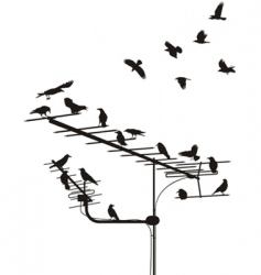 Crows on antenna vector