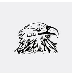 Hand-drawn pencil graphics bird eagle hawk vector