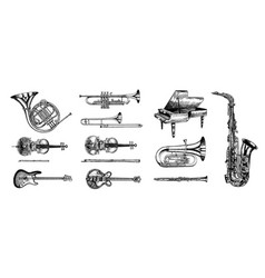 Jazz classical wind instruments set musical vector