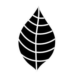 Leaf plant decorative icon vector