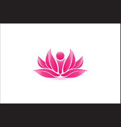 pink lotus flower abstract vector image