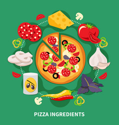 Pizza filler round composition vector