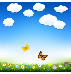 butterfly and grass vector image vector image