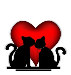 Cute cats in love vector image