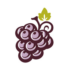grape icon with leaf vector image vector image