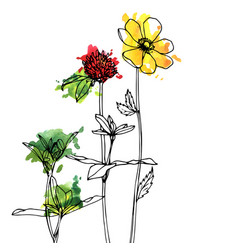 Drawing herbs and flowers vector
