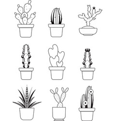 Hand drawn outline cactus desert thorn vector