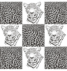 Leopard patterns for Textiles vector image